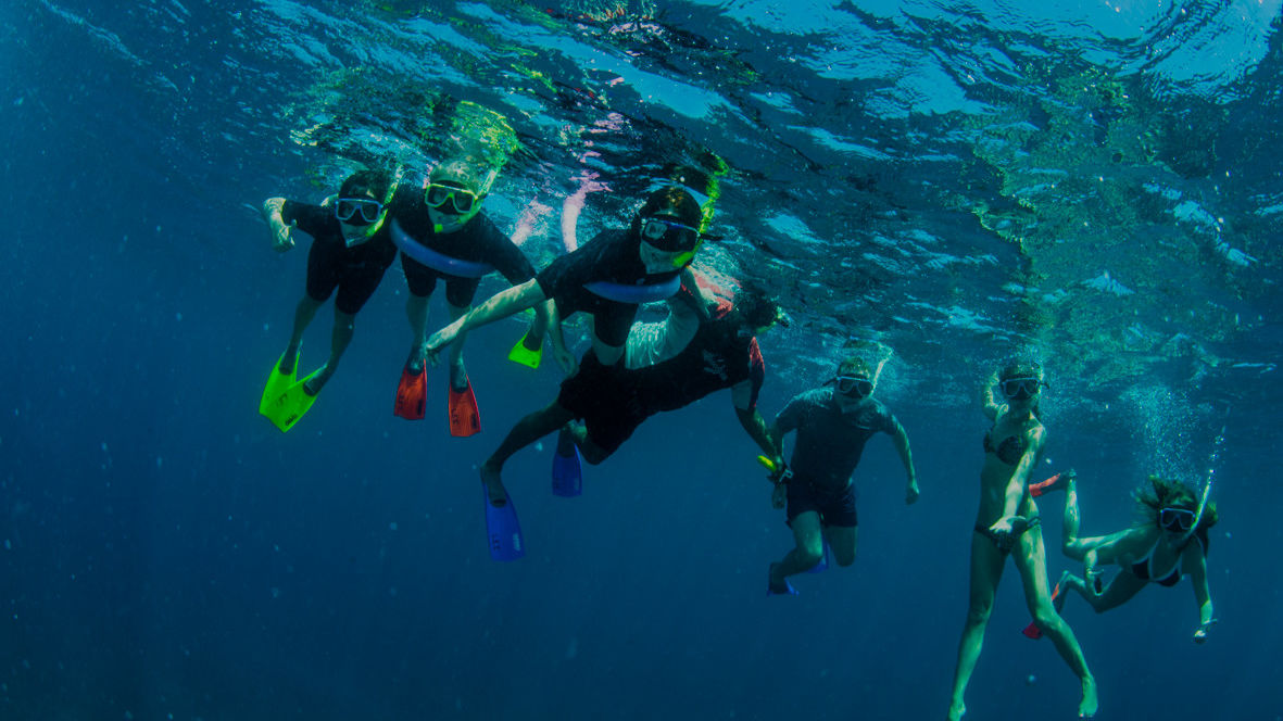 Volunteers making a world of difference to the Reef