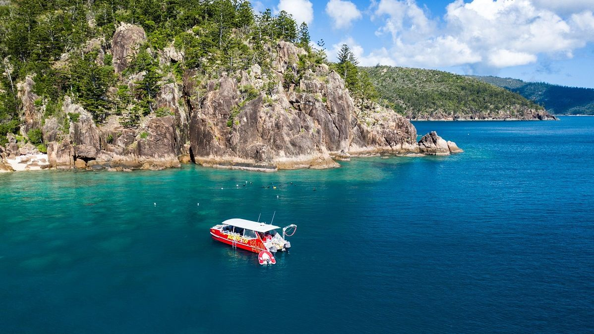 Whitsunday tourism operators upskill to help restore local reefs