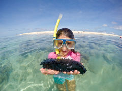 Child with sea cucumber