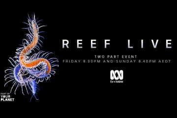 The Great Barrier Reef Foundation's Reef-saving projects showcased live on the ABC