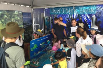 Become a 'Reef Builder' at World Science Festival
