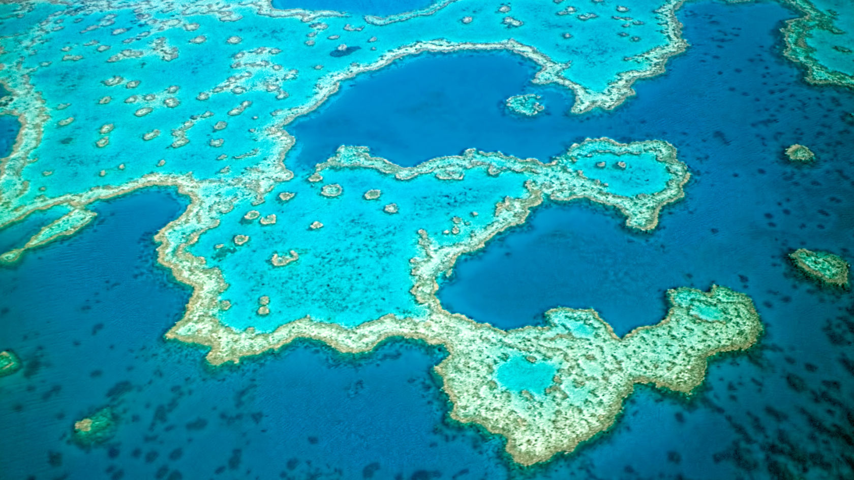 What To Do At Great Barrier Reef